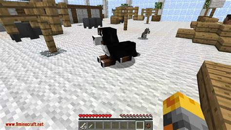 doggystyle mod  dog breeds dog house minecraftnet