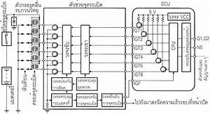 Diagram  1980 Turbo Trans Am Wiring Diagram Full Version