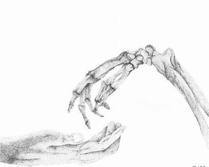 Lost Skeleton True Drawings