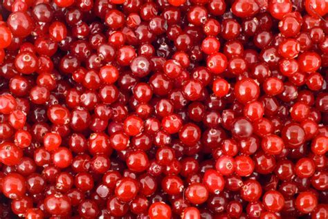 Health,beauty hair care,skinc care benefits of cranberries