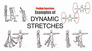 The Art Of Stretching