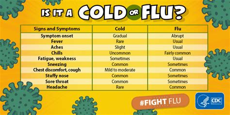 flu cold overview