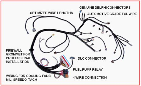 Swap Wiring Harness Juan Engine