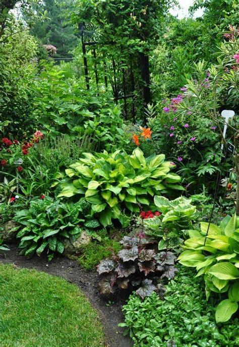are hostas annuals or perennials a mix of perennials including several hostas outdoor living pinterest gardens hosta