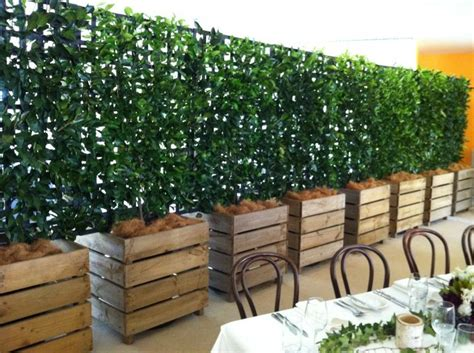 vines for privacy espalier in wooden cubes large planters with trellis to screen out back pinterest