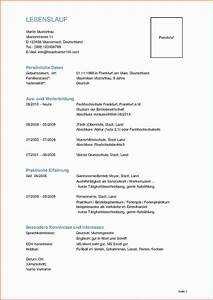 6 lebenslauf student muster transition plan templates With lebenslauf master student