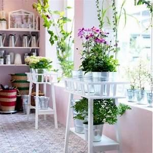 creer un mini jardin dinterieur des idees sur pinterest With decoration mur exterieur jardin 1 decoration vegetale le rideau vegetal jardiniere d