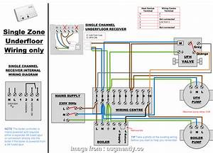 18 Most Dual Thermostat Wiring Diagram Images