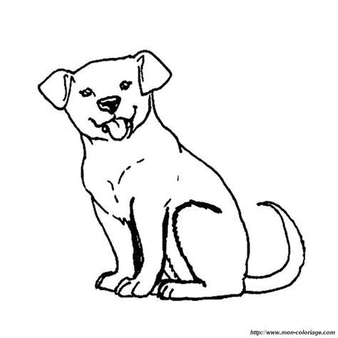 labrador coloring pages labrador puppies coloring pages