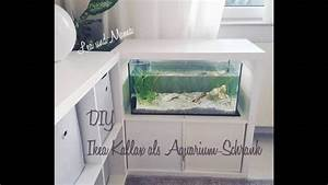 Aquarium Unterschrank Ikea : diy aquarium schrank aus kallax regal youtube ~ Watch28wear.com Haus und Dekorationen