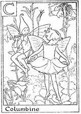 Coloring Pages Fairy Alphabet Flower Fairies Columbine Colouring Letter Printable Flowers Malfoy Adult Sheets Adults Narcissa Books Rainbow Angel Numbers sketch template
