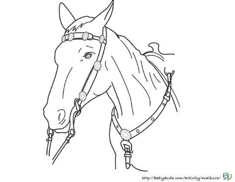 ausmalbilder pferdekopf kinderbilderdownload