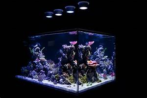 Saltwater aquarium led lights