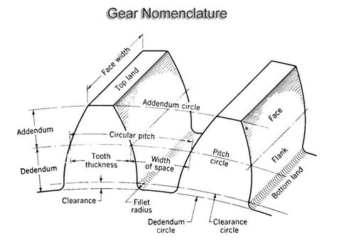 Gear Line Diagram by Gear Types Nomenclature Materials Selection