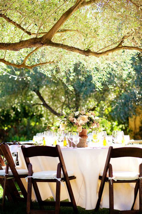 Backyard Vineyard Wedding Reception  Elizabeth Anne