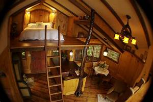 Treehouse architecture, revisited | Home Owner Nut