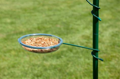 hangers for bird feeders birdcage design ideas