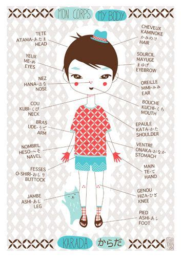 Body Parts in English and Japanese