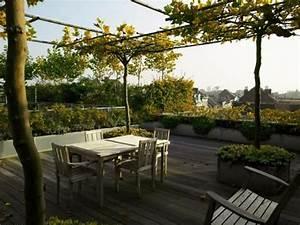 Pflanzen Für Dachterrasse : ber ideen zu dachterrasse gestalten auf pinterest ~ Michelbontemps.com Haus und Dekorationen
