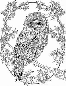 OWL Coloring Pages for Adults. Free Detailed Owl Coloring ...