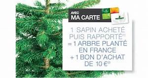 Sapin De Noel Truffaut : sapin de no l truffaut 10 en bon d 39 achat 1 arbre plant ~ Farleysfitness.com Idées de Décoration