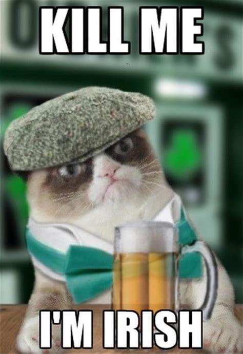 Funny Irish Memes - grumpy mctard irish cat dump a day