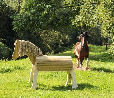 voltigierpferd outdoor holz pferd holz spielzeug peitz