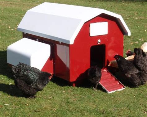 10 Inspiring Urban Chicken Coop Designs For Happy Hens