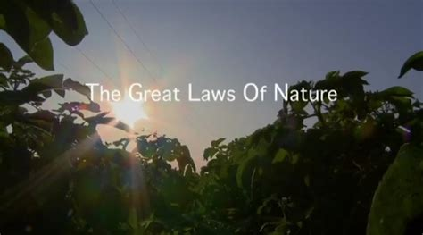 Opinions On Laws Of Nature