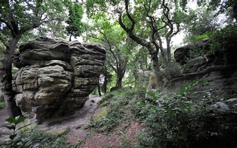 tunbridge wells kent high rocks