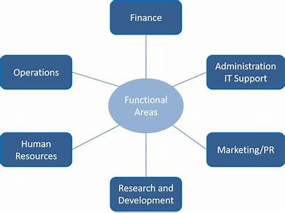 Management Functional Skills Functions Business Traditional Agile