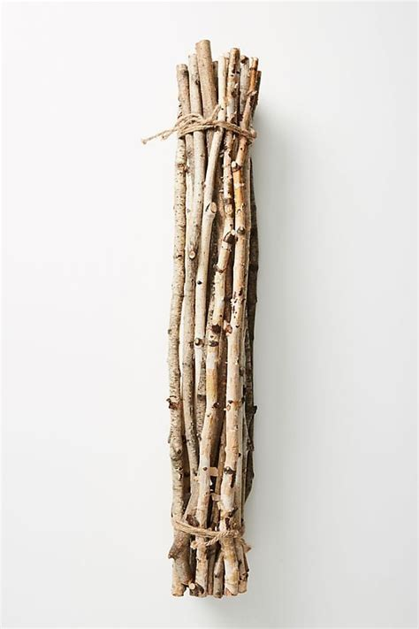 Anthropologie Is Selling A Bundle Of Twigs For $42 - Simplemost