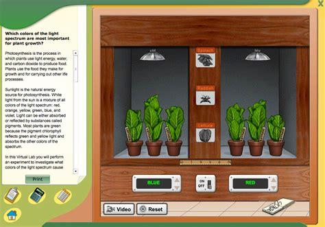virtual photosynthesis lab