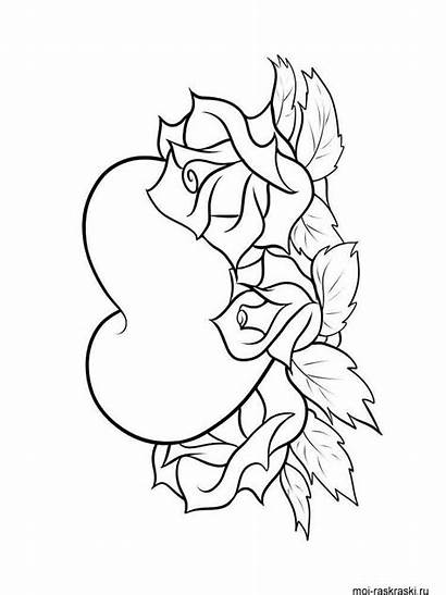 Coloring Heart Pages Printable Mycoloring