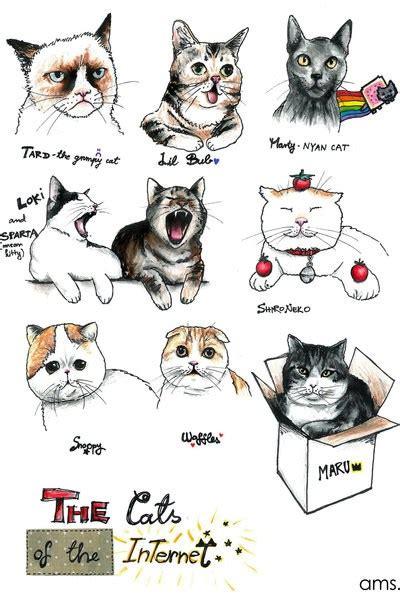 lolcats snoopy lol  funny cat memes funny cat