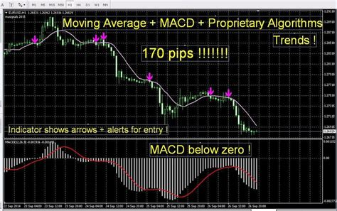 best forex trading platform in the world most accurate forex indicator signals best proprietary