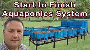 Aquaponics - Step By Step Instructions