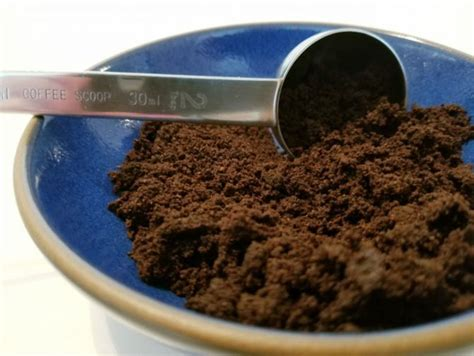 They accompany my coffee or tea almost every morning. How to Use Eggshells and Coffee Grounds in the Garden as Compost - Chowhound
