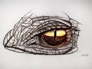 Dragon eye - Drawing by MuuseDesign on DeviantArt