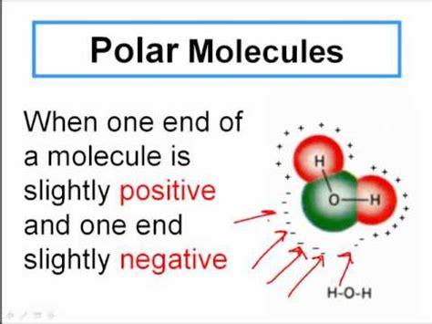 Polar And Nonpolar Covalent Molecules Youtube