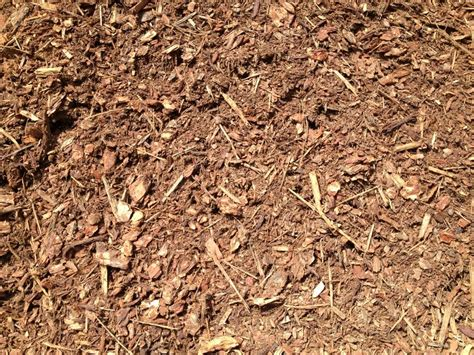 mulch vs top 28 mulch vs bark order yard and garden mulch and stone in milwaukee wi phillips bark