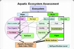 Aquatic Ecosystem State Assessment Model