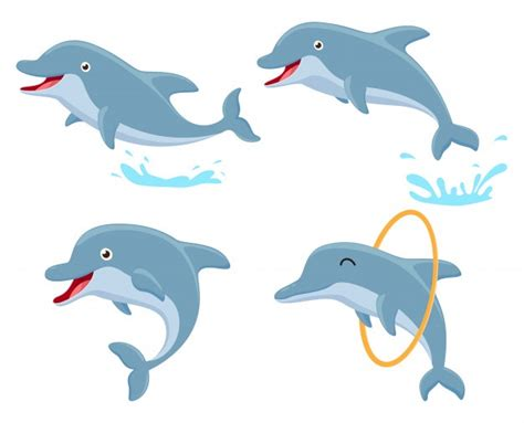 Dolphin Vectors, Photos And Psd Files