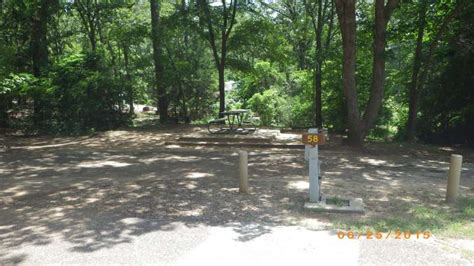 tyler state park campsites  electric water sewer hookups texas parks wildlife department