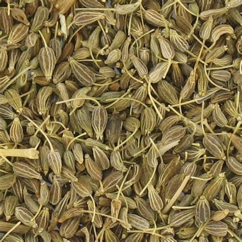 vente organic herbal tea anise anise bio too beauty food