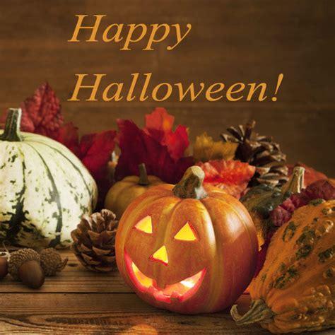 halloween sprueche mit grusel suessigkeiten garantie