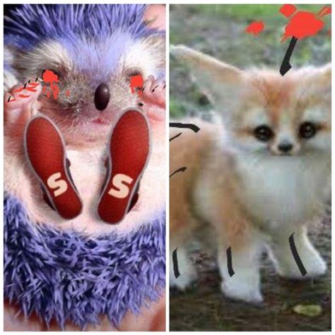 Sonicexe And Tails Doll In Real Life Sonic The Hedgehog