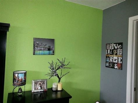 green grey paint manificent decoration lime green  grey