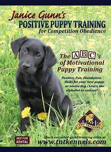 janice gunns positive puppy training training dvd we With dog training dvd