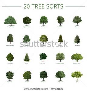 vector set green trees simple form stock vector 359900798